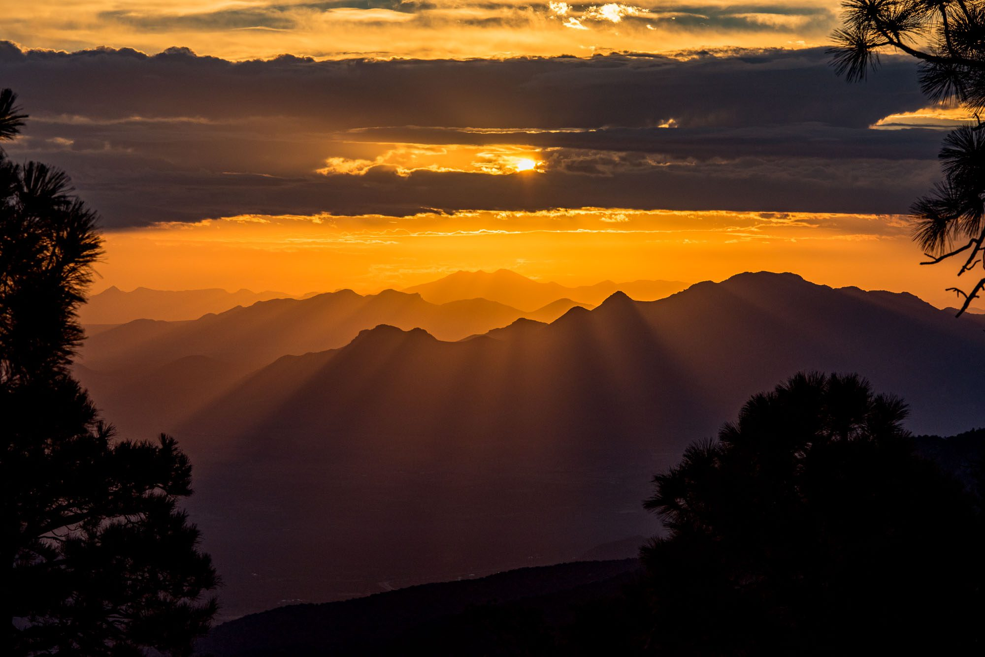 Chirrichua Alan Powell Photography